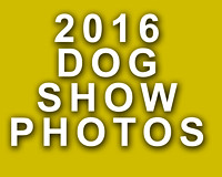 2016 Dog Show Events