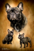 Jacky Mills Frenchie Art Dec 2014