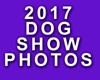 2017 Dog Show Events