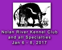 Glen Rose Jan 2017