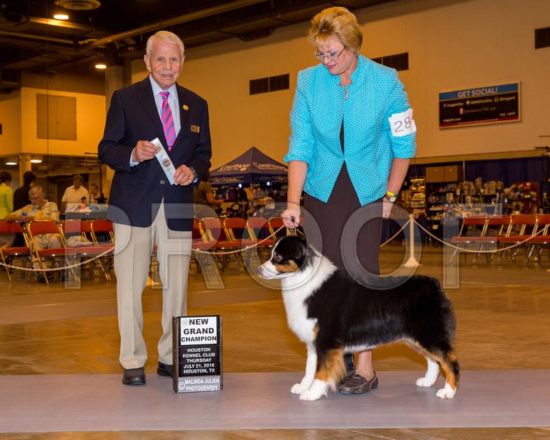 Robert Stein Dog Show Judge