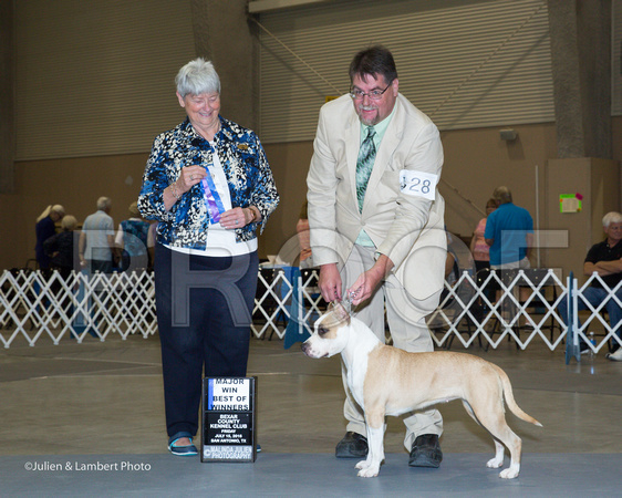 Anne Katona Dog Show Judge